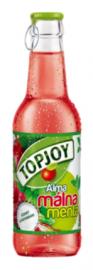 TopJoy üveges málna-menta 0,25l 1/24