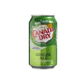 Canada Dry 0,33l 1/24 (622405100)