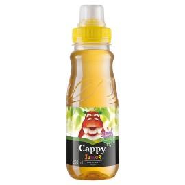 Cappy 0,25l Junior/Kids Alma