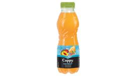 Cappy 0,5l Ice Fruit Őszibarack-dinnye 12%